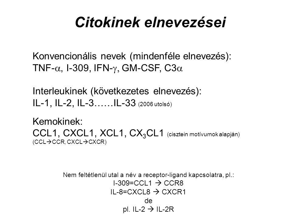 Konvencionális nevek (mindenféle elnevezés): TNF- , I-309, IFN-  GM-CSF, C3  Interleukinek (következetes elnevezés): IL-1, IL-2, IL-3……IL-33 (2006 utolsó) Kemokinek: CCL1, CXCL1, XCL1, CX 3 CL1 (cisztein motívumok alapján) (CCL  CCR, CXCL  CXCR) Nem feltétlenül utal a név a receptor-ligand kapcsolatra, pl.: I-309=CCL1  CCR8 IL-8=CXCL8  CXCR1 de pl.