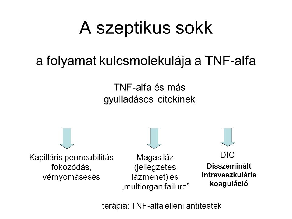 A szeptikus sokk a folyamat kulcsmolekulája a TNF-alfa TNF-alfa és más gyulladásos citokinek Kapilláris permeabilitás fokozódás, vérnyomásesés DIC Mag