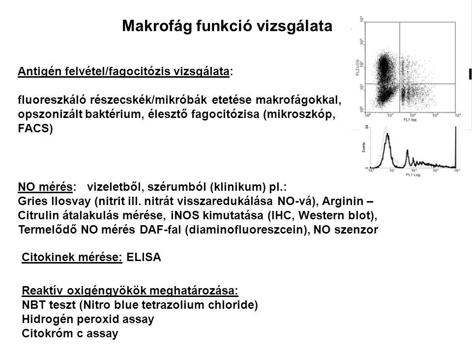 NO mérés: vizeletből, szérumból (klinikum) pl.: Gries Ilosvay (nitrit ill. nitrát visszaredukálása NO-vá), Arginin – Citrulin átalakulás mérése, iNOS