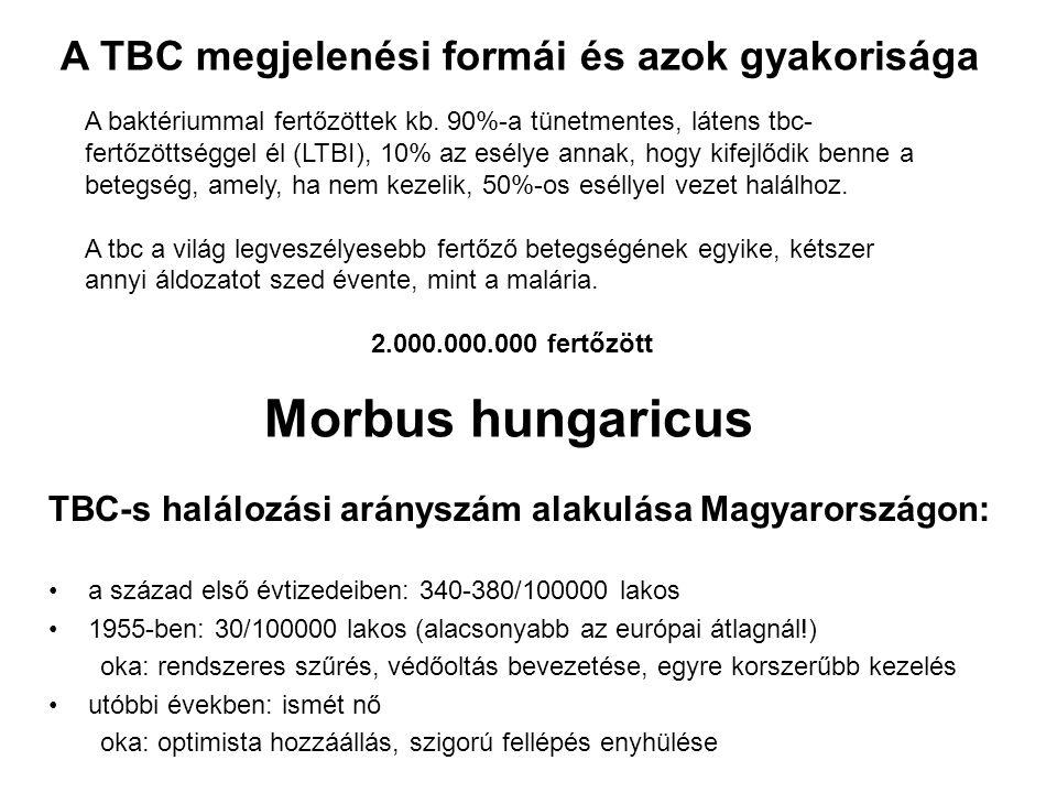 Morbus hungaricus TBC-s halálozási arányszám alakulása Magyarországon: a század első évtizedeiben: 340-380/100000 lakos 1955-ben: 30/100000 lakos (ala