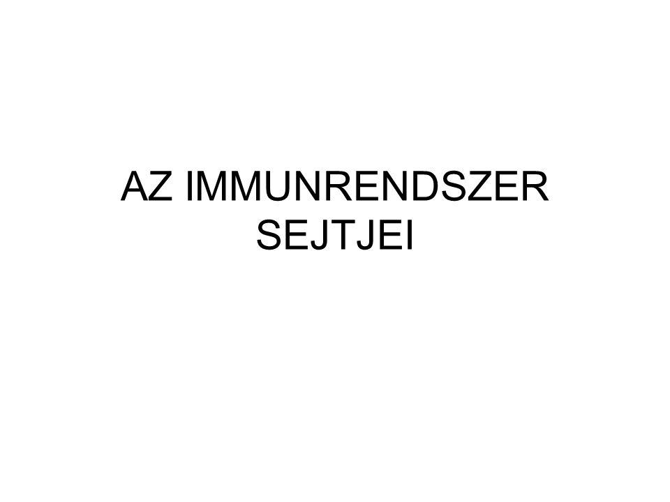 KÖZÖS LIMFOID PROGENITOR SEJT B-limfocitaT-limfocita (Bursa Fabricii) (thymus) érés: csontvelőben kezdődik csecsemőmirigyben folytatódik további differenciálódás: perifériális szövetekben aktivációt követően plazmasejt effektor T-sejt citotoxikus T-sejt segítő T-sejt antigén felismerés* csak MHC-n keresztül
