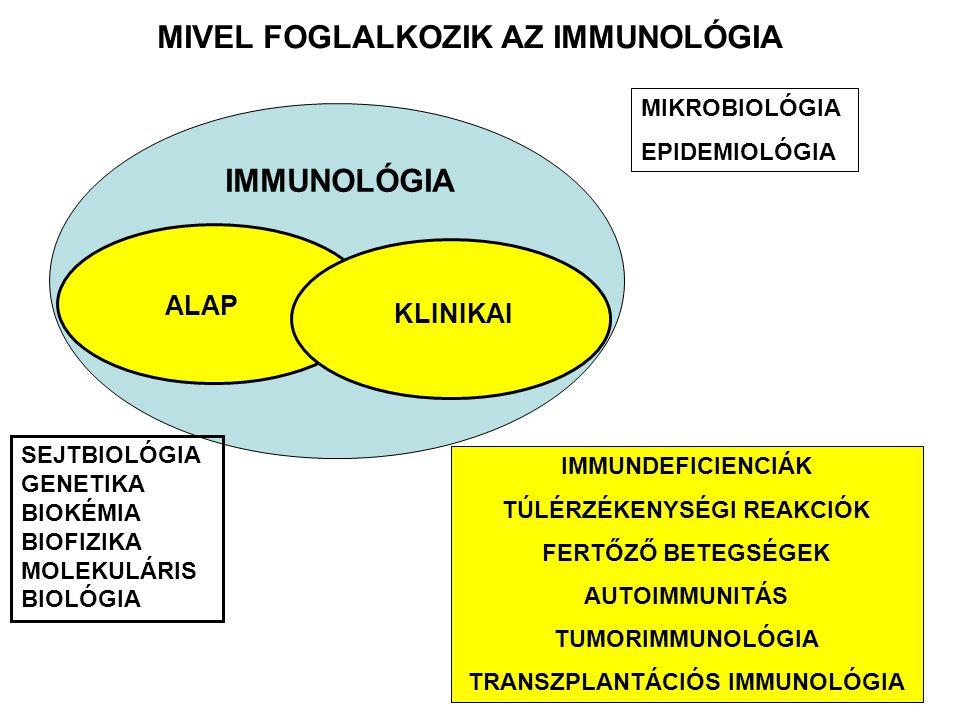 MIVEL FOGLALKOZIK AZ IMMUNOLÓGIA IMMUNOLÓGIA MIKROBIOLÓGIA EPIDEMIOLÓGIA SEJTBIOLÓGIA GENETIKA BIOKÉMIA BIOFIZIKA MOLEKULÁRIS BIOLÓGIA ALAP IMMUNDEFICIENCIÁK TÚLÉRZÉKENYSÉGI REAKCIÓK FERTŐZŐ BETEGSÉGEK AUTOIMMUNITÁS TUMORIMMUNOLÓGIA TRANSZPLANTÁCIÓS IMMUNOLÓGIA KLINIKAI