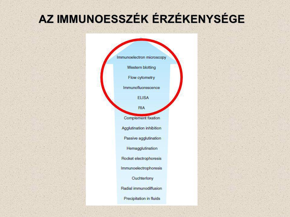 Hagyományos hisztokémia Akut bronchopneumonia (hematoxilin-eozin festés) Viszonylag kevés sejttípus azonosítható