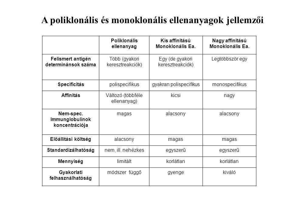 Poliklonális ellenanyag Kis affinitású Monoklonális Ea. Nagy affinitású Monoklonális Ea. Felismert antigén determinánsok száma Több (gyakori keresztre