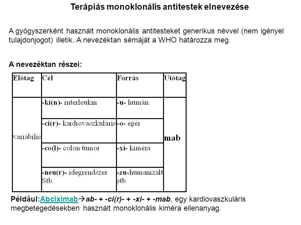 Terápiás monoklonális antitestek elnevezése A gyógyszerként használt monoklonális antitesteket generikus névvel (nem igényel tulajdonjogot) illetik. A