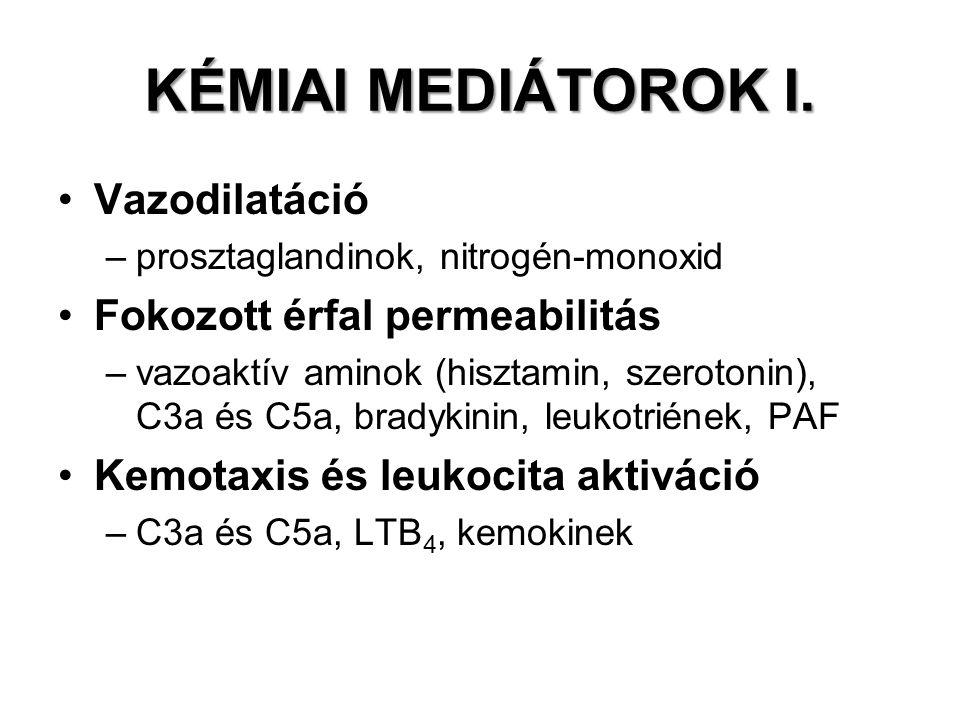KÉMIAI MEDIÁTOROK I. Vazodilatáció –prosztaglandinok, nitrogén-monoxid Fokozott érfal permeabilitás –vazoaktív aminok (hisztamin, szerotonin), C3a és