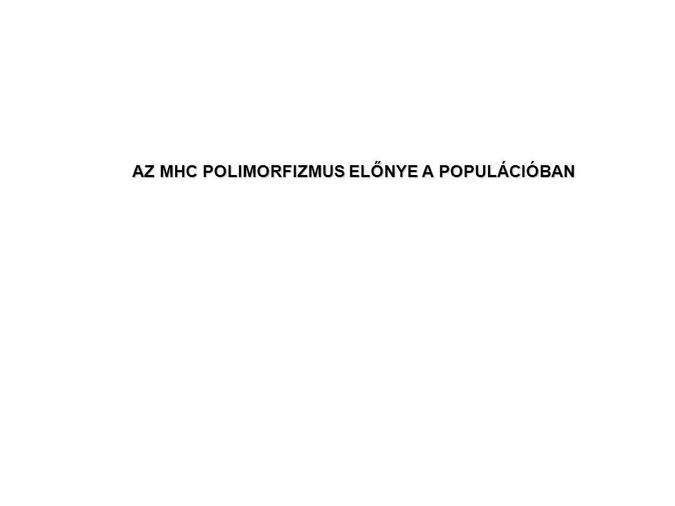 AZ MHC POLIMORFIZMUS ELŐNYE A POPULÁCIÓBAN
