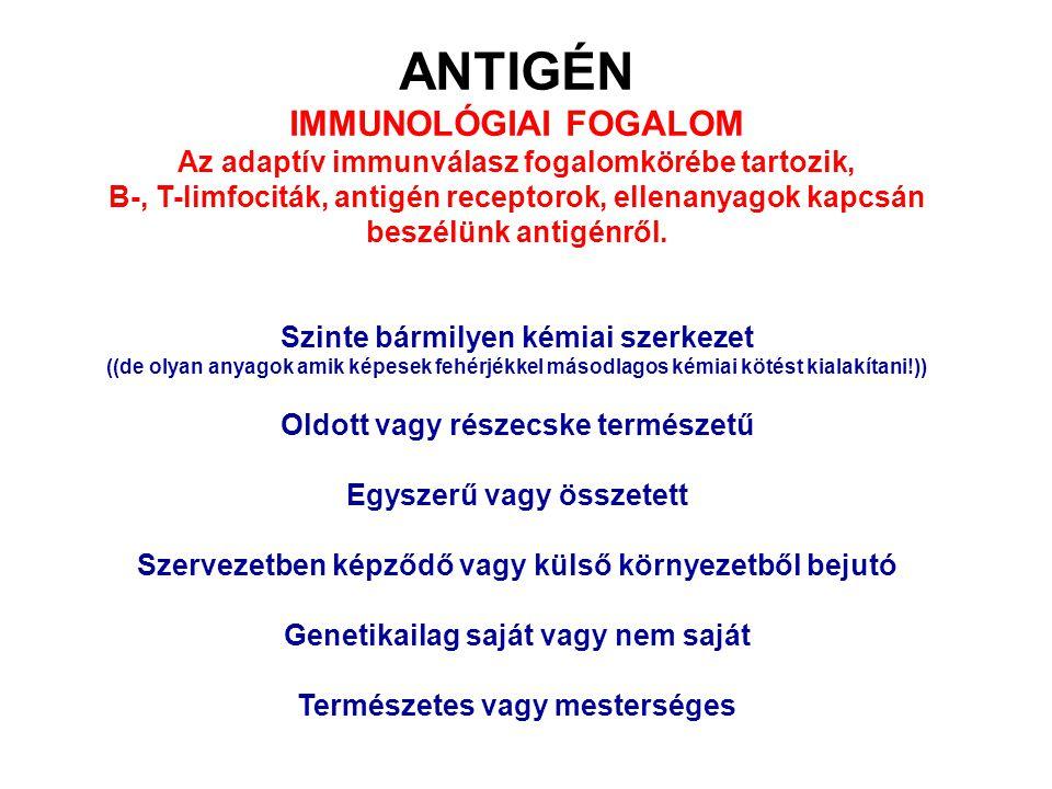 ANTIGÉN IMMUNOLÓGIAI FOGALOM Az adaptív immunválasz fogalomkörébe tartozik, B-, T-limfociták, antigén receptorok, ellenanyagok kapcsán beszélünk antig