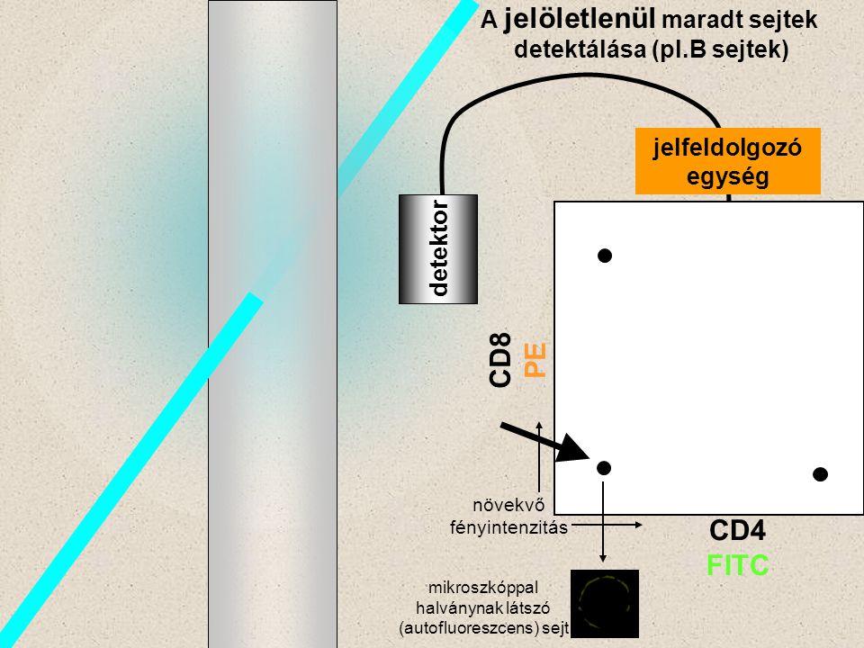B detektor A jelöletlenül maradt sejtek detektálása (pl.B sejtek) CD8 PE CD4 FITC jelfeldolgozó egység növekvő fényintenzitás mikroszkóppal halványnak