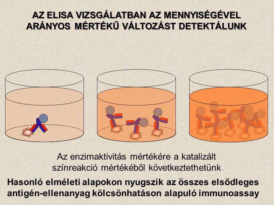 AZ ELISA VIZSGÁLATBAN AZ MENNYISÉGÉVEL ARÁNYOS MÉRTÉKŰ VÁLTOZÁST DETEKTÁLUNK Az enzimaktivitás mértékére a katalizált színreakció mértékéből következt