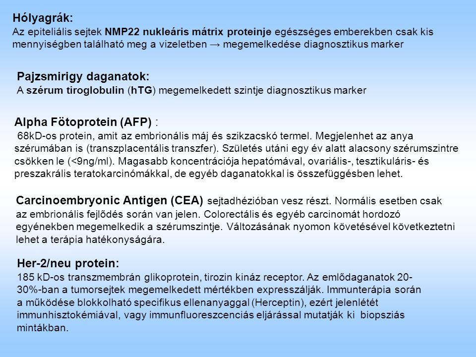 Hólyagrák: Az epiteliális sejtek NMP22 nukleáris mátrix proteinje egészséges emberekben csak kis mennyiségben található meg a vizeletben → megemelkedése diagnosztikus marker Pajzsmirigy daganatok: A szérum tiroglobulin (hTG) megemelkedett szintje diagnosztikus marker Alpha Fötoprotein (AFP) : 68kD-os protein, amit az embrionális máj és szikzacskó termel.
