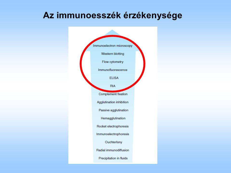 Aspecifikus kitapadásból eredő hiba A fehérjék aspecifikus kitapadása csökkenthető: telítéssel/blokkolással detergens alkalmazásával ELISA hibák Az antigén mellett a plasztik felületre kitapadhatnak maguk az ellenanyagok is - akár közvetlenül - akár indirekten a színreakció ugyan az