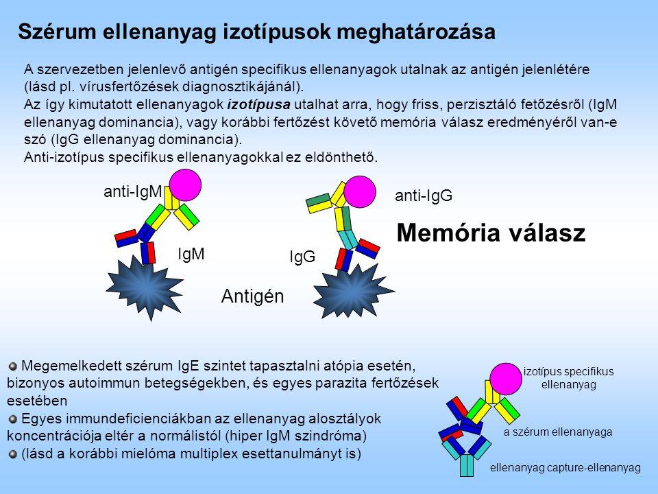 Szérum ellenanyag izotípusok meghatározása A szervezetben jelenlevő antigén specifikus ellenanyagok utalnak az antigén jelenlétére (lásd pl. vírusfert