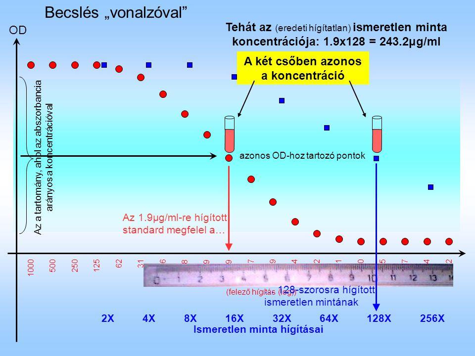 """OD Becslés """"vonalzóval"""" standard koncentráció (µg/ml) (felező hígítás (log)) Az a tartomány, ahol az abszorbancia arányos a koncentrációval 2X4X8X16X3"""
