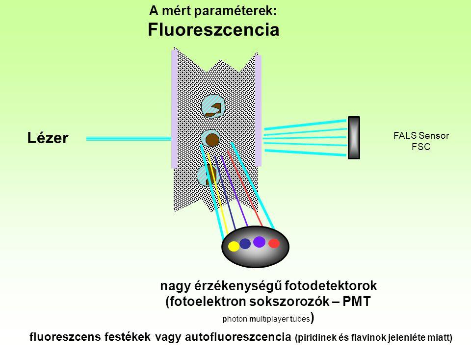 Lézer A mért paraméterek: Fluoreszcencia FALS Sensor FSC nagy érzékenységű fotodetektorok (fotoelektron sokszorozók – PMT photon multiplayer tubes ) f
