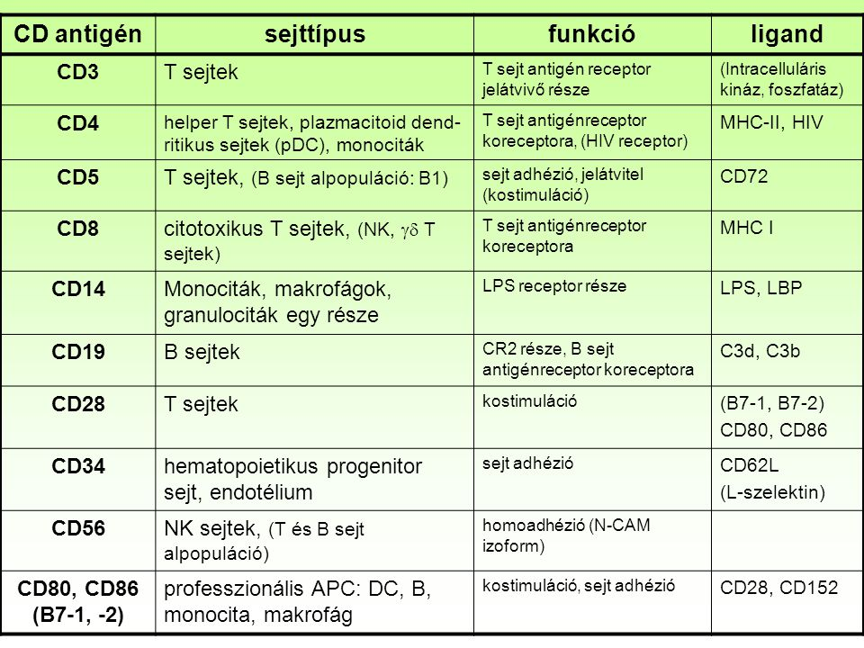 Perifériás vér vizsgálata hematológiai automatával Mért paraméterek: peroxidáz festés (mieloperoxidáz jelenléte, x – tengelyen) fényszórás (nagy granulált sejteknél magas, y –tengelyen) 1 Zaj 2 Magvas vörösvérsejt 3 Összetapadt thrombociták 4 Limfociták és bazofilek 5 Nagy nemfestődő sejtek (LUC) 6 Monociták 7 Neutrofilek 8 Eozinofilek Csak a főbb sejtípusokat lehet meghatározni vele