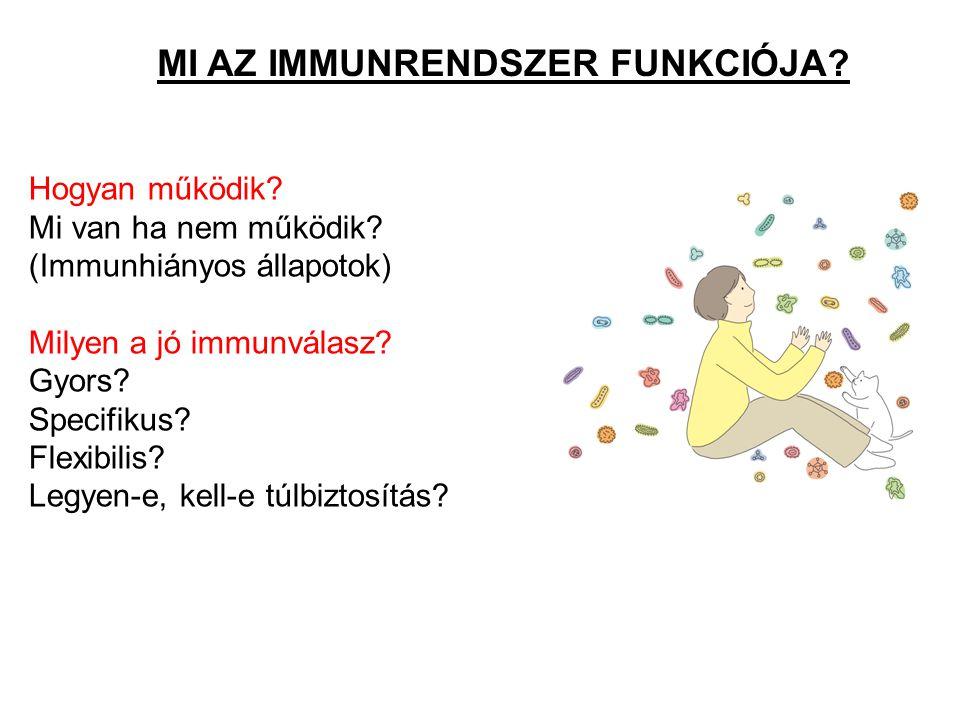 MI AZ IMMUNRENDSZER FUNKCIÓJA? Hogyan működik? Mi van ha nem működik? (Immunhiányos állapotok) Milyen a jó immunválasz? Gyors? Specifikus? Flexibilis?