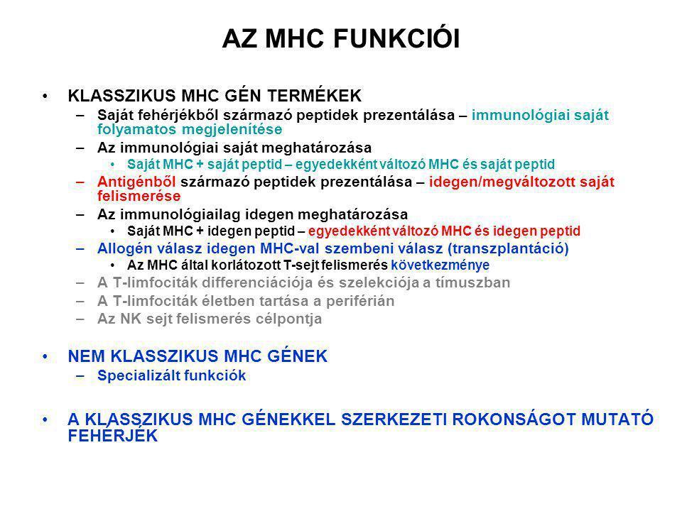 AZ MHC FUNKCIÓI KLASSZIKUS MHC GÉN TERMÉKEK –Saját fehérjékből származó peptidek prezentálása – immunológiai saját folyamatos megjelenítése –Az immuno