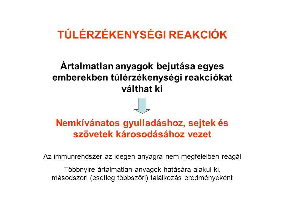 Fekete üröm (Artemisia vulgaris) levélfonák zöld levélfonák fehéresen molyhos
