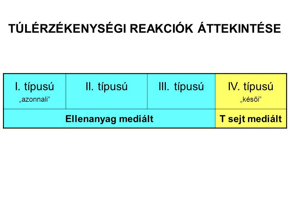 AZ ELLENANYAG MEDIÁLT TÚLÉRZÉKENYSÉGI REAKCIÓK TÍPUSAI Ellenanyag izotípus Antigén Effektor mechanizmus Példa Szolubilis antigén Hízósejt aktiváció Allergiás rhinitis, asthma bronchiale, anaphylaxia Szolubilis antigén Komplement, fagociták Sejtfelszíni receptor Sejtfelszíni vagy mátrix- kötött antigén Az ellenanyag megváltoztatja a jelátvitelt Komplement, Fc  R + sejtek (fagociták, NK-sejtek) Egyes gyógyszer- allergiák (pl.