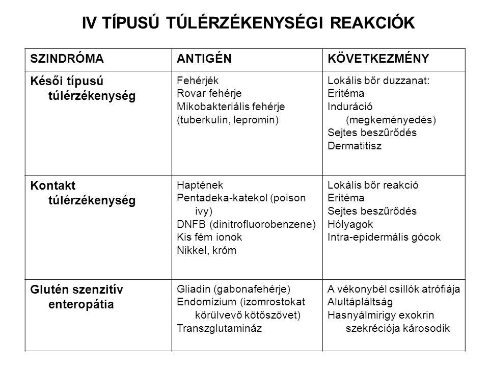 IV TÍPUSÚ TÚLÉRZÉKENYSÉGI REAKCIÓK SZINDRÓMAANTIGÉNKÖVETKEZMÉNY Késői típusú túlérzékenység Fehérjék Rovar fehérje Mikobakteriális fehérje (tuberkulin
