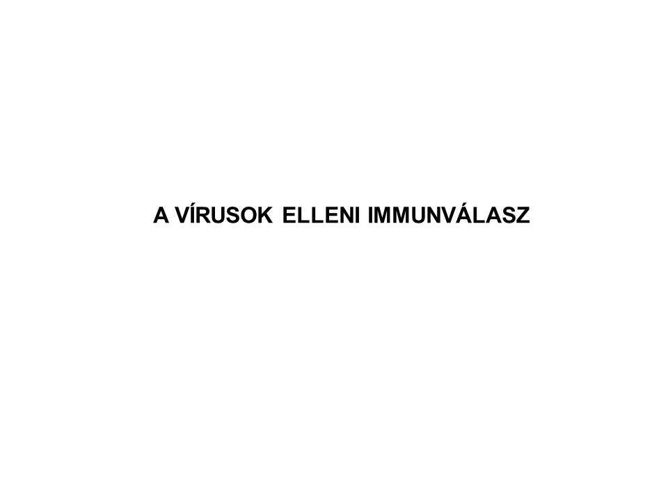 1 Mutáció/10 5 bp Reverz Transzkriptáz DNS-Polimeráz 1 Mutáció/10 8 bp HibákEnzim A HIV VARIABILITÁSÁT KIVÁLTÓ MECHANIZMUS Adott fertőzött egyeden belül A VIRÁLIS REVERZ TRANSZKRIPTÁZNAK NINCS A CELLULÁRIS DNS POLIMERÁZHOZ HASONLÓ ELLENÖRZŐ MECHANIZMUSA ÚJ VÍRUS VARIÁNSOK MEGJELENÉSE
