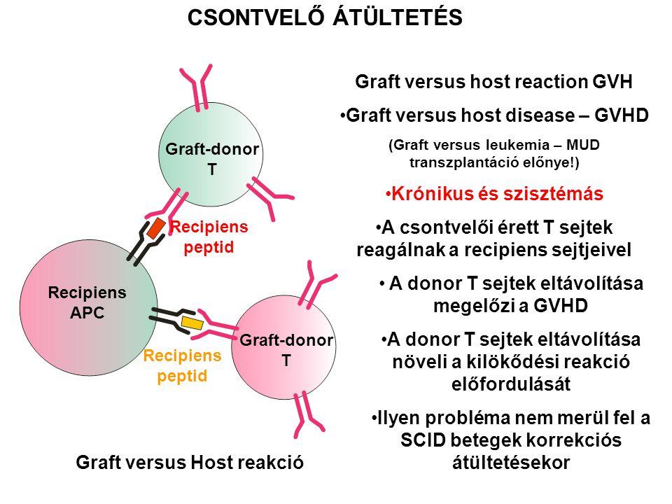 Graft versus host reaction GVH Graft versus host disease – GVHD (Graft versus leukemia – MUD transzplantáció előnye!) Krónikus és szisztémás A csontve