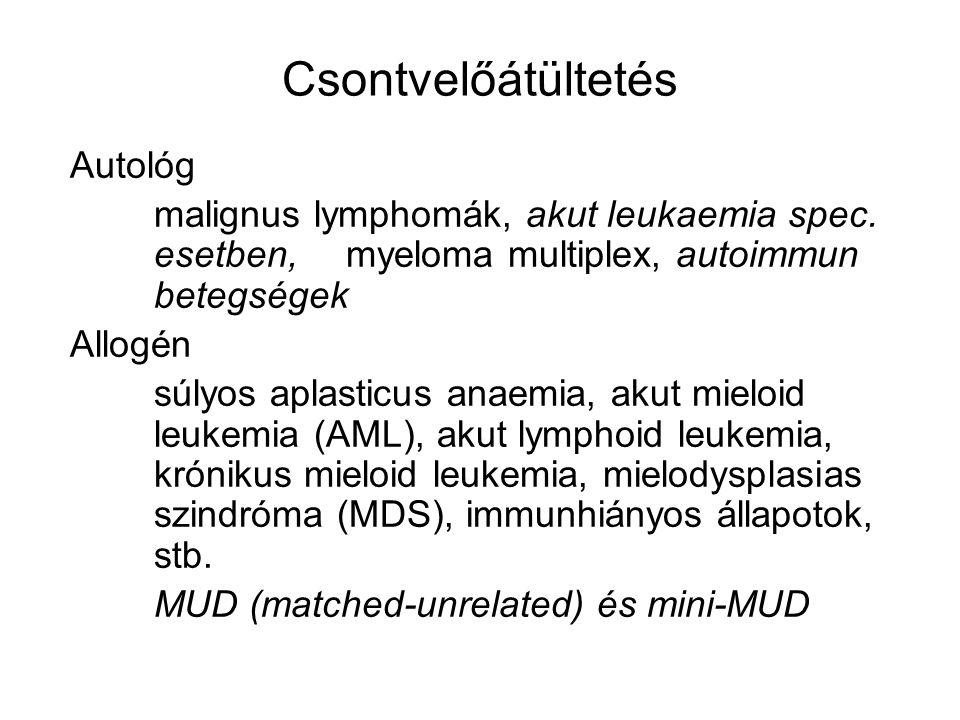 Csontvelőátültetés Autológ malignus lymphomák, akut leukaemia spec. esetben, myeloma multiplex, autoimmun betegségek Allogén súlyos aplasticus anaemia