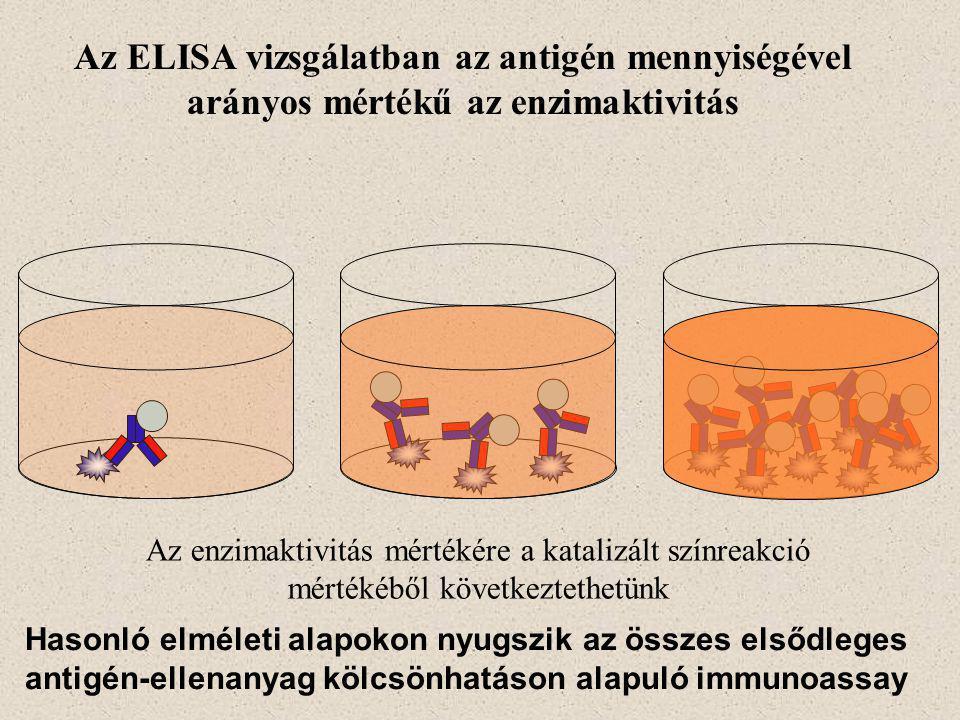 Az ELISA vizsgálatban az antigén mennyiségével arányos mértékű az enzimaktivitás Az enzimaktivitás mértékére a katalizált színreakció mértékéből következtethetünk Hasonló elméleti alapokon nyugszik az összes elsődleges antigén-ellenanyag kölcsönhatáson alapuló immunoassay