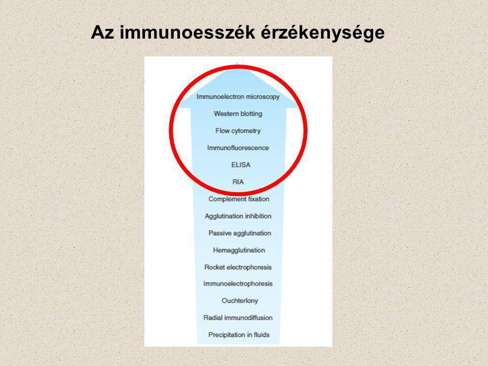 Immunhisztokémia ABC Technika (lásd a korábbi diát is) Secunder antitest Avidin Szövetmetszet Sejtek (sejttenyészetek) Tárgylemez Primer antitest Biotin Enzim X