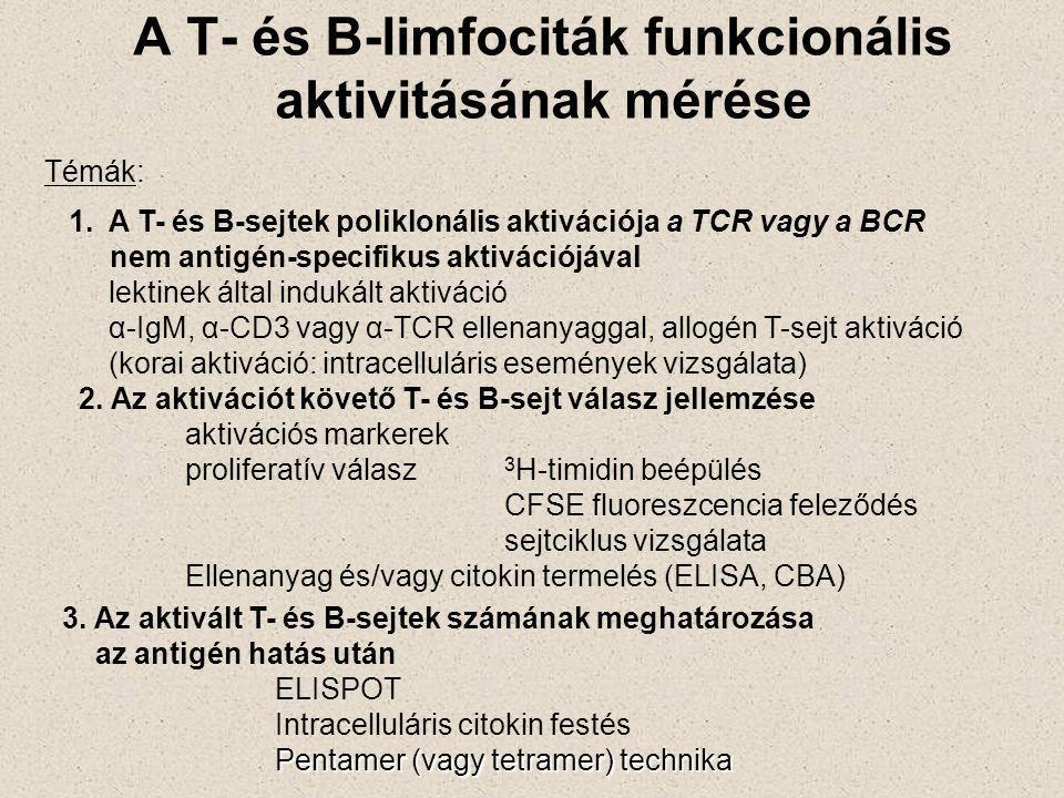 A humorális immunválasz szakaszai antigén felismerés aktiváció, proliferáció, differenciáció Nyugvó IgM +, IgD + érett B-sejt Antigén Aktivált B-sejt Segítő T-sejt, más stimulus Klonális expanzió B-sejt Nagy affinitású Ig-t expresszáló B-sejt Nagy affinitású IgG Memória B-sejt Affinitás érés Izotípus váltás Antitest termelés IgG-t expresszáló