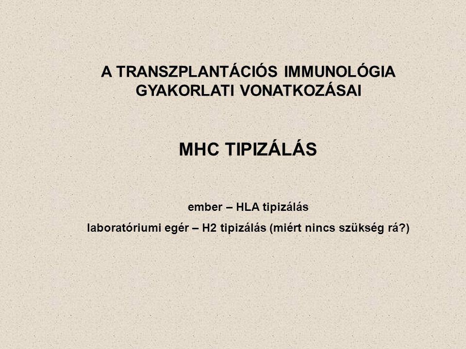 A TRANSZPLANTÁCIÓS IMMUNOLÓGIA GYAKORLATI VONATKOZÁSAI MHC TIPIZÁLÁS ember – HLA tipizálás laboratóriumi egér – H2 tipizálás (miért nincs szükség rá?)