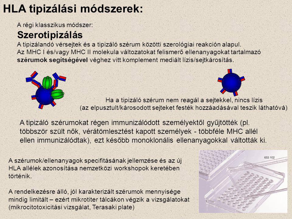 A régi klasszikus módszer: Szerotipizálás A tipizálandó vérsejtek és a tipizáló szérum közötti szerológiai reakción alapul. Az MHC I és/vagy MHC II mo
