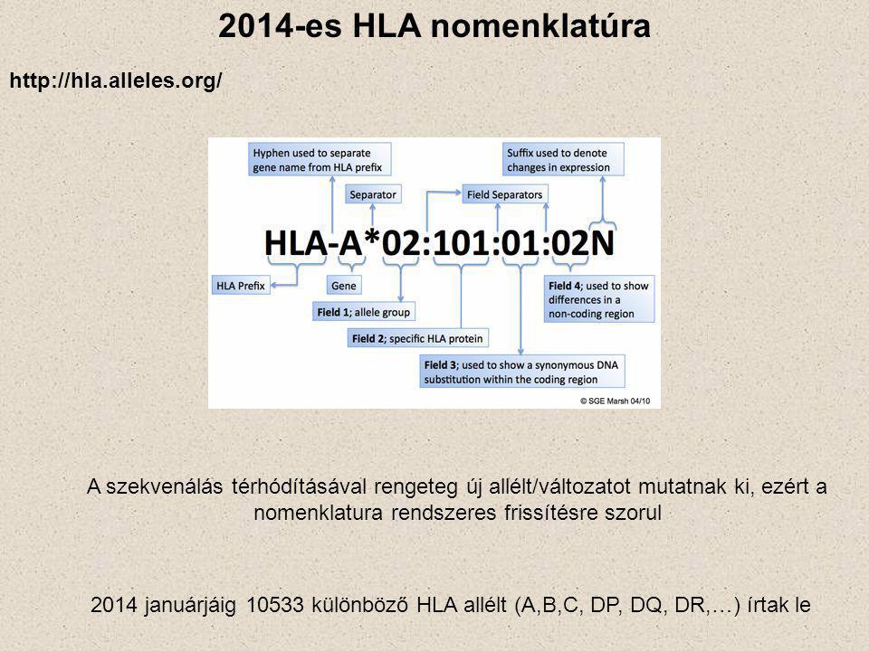 2014-es HLA nomenklatúra A szekvenálás térhódításával rengeteg új allélt/változatot mutatnak ki, ezért a nomenklatura rendszeres frissítésre szorul http://hla.alleles.org/ 2014 januárjáig 10533 különböző HLA allélt (A,B,C, DP, DQ, DR,…) írtak le