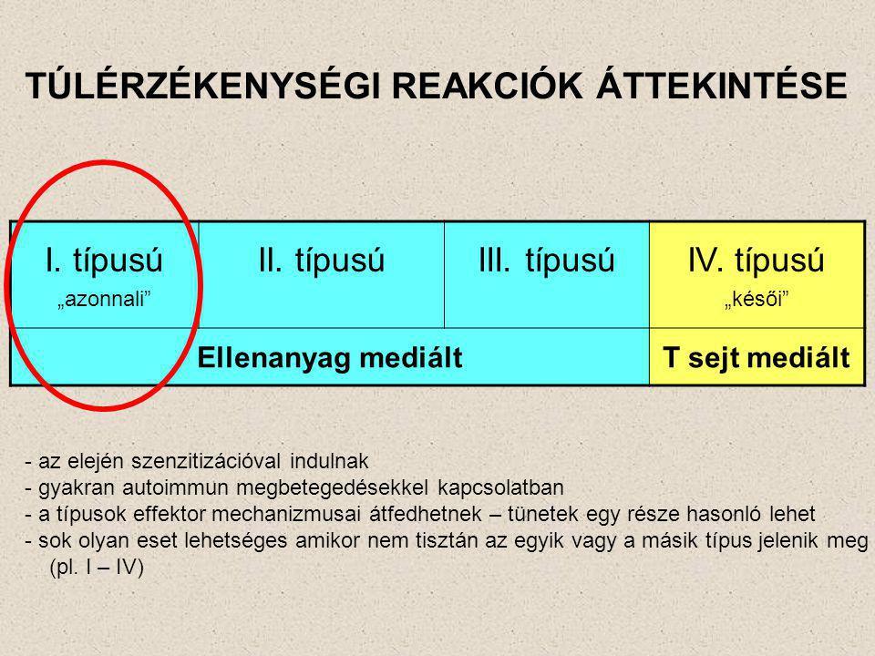 """TÚLÉRZÉKENYSÉGI REAKCIÓK ÁTTEKINTÉSE I. típusú """"azonnali"""" II. típusúIII. típusúIV. típusú """"késői"""" Ellenanyag mediáltT sejt mediált - az elején szenzit"""
