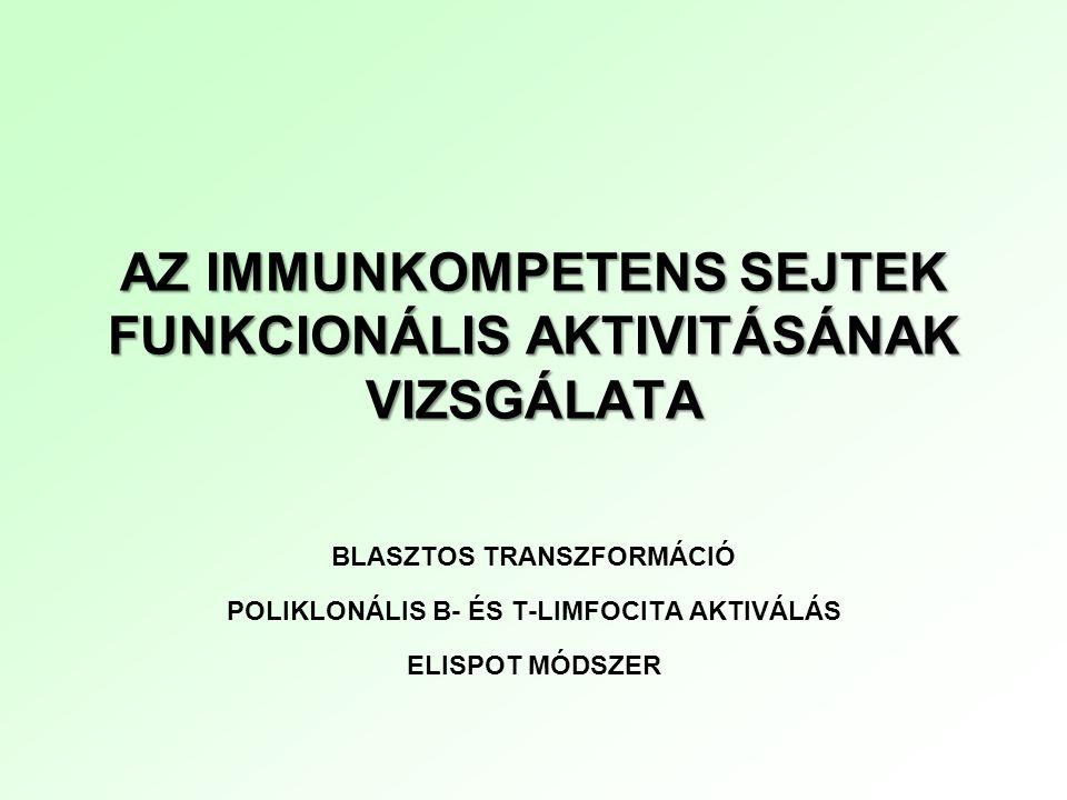 AZ IMMUNKOMPETENS SEJTEK FUNKCIONÁLIS AKTIVITÁSÁNAK VIZSGÁLATA BLASZTOS TRANSZFORMÁCIÓ POLIKLONÁLIS B- ÉS T-LIMFOCITA AKTIVÁLÁS ELISPOT MÓDSZER