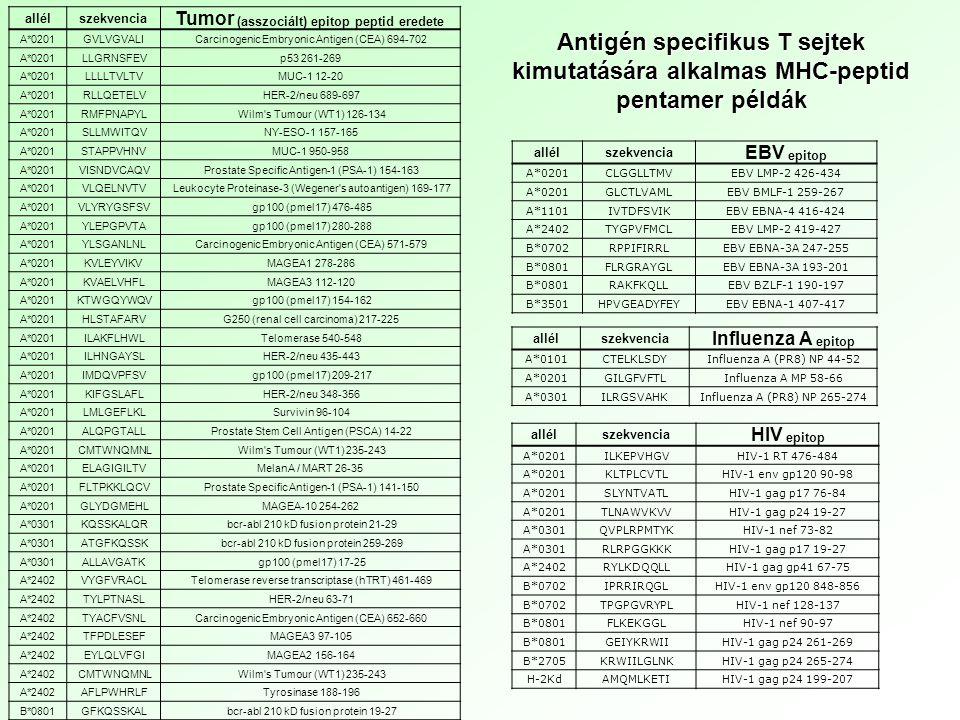 allélszekvencia Tumor (asszociált) epitop peptid eredete A*0201GVLVGVALICarcinogenic Embryonic Antigen (CEA) 694-702 A*0201LLGRNSFEVp53 261-269 A*0201