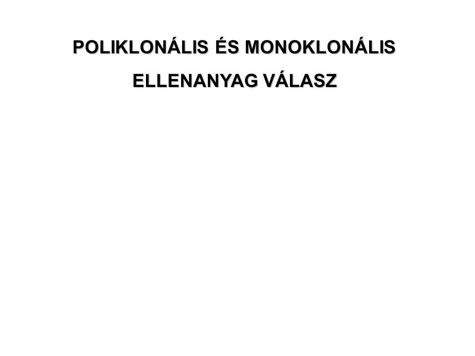 POLIKLONÁLIS ÉS MONOKLONÁLIS ELLENANYAG VÁLASZ