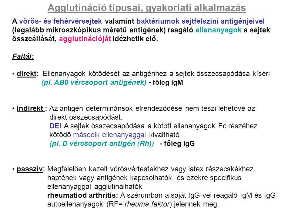 Agglutináció típusai, gyakorlati alkalmazás A vörös- és fehérvérsejtek valamint baktériumok sejtfelszíni antigénjeivel (legalább mikroszkópikus méretű