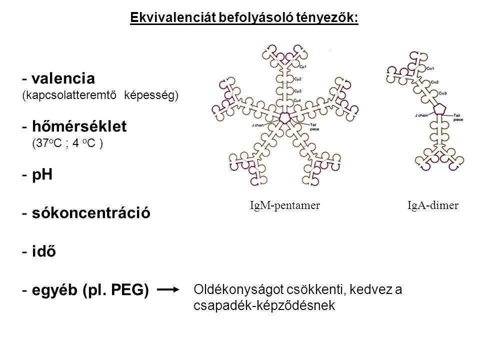 - valencia (kapcsolatteremtő képesség) - hőmérséklet (37 о C ; 4 о C ) - pH - sókoncentráció - idő - egyéb (pl. PEG) Ekvivalenciát befolyásoló tényező