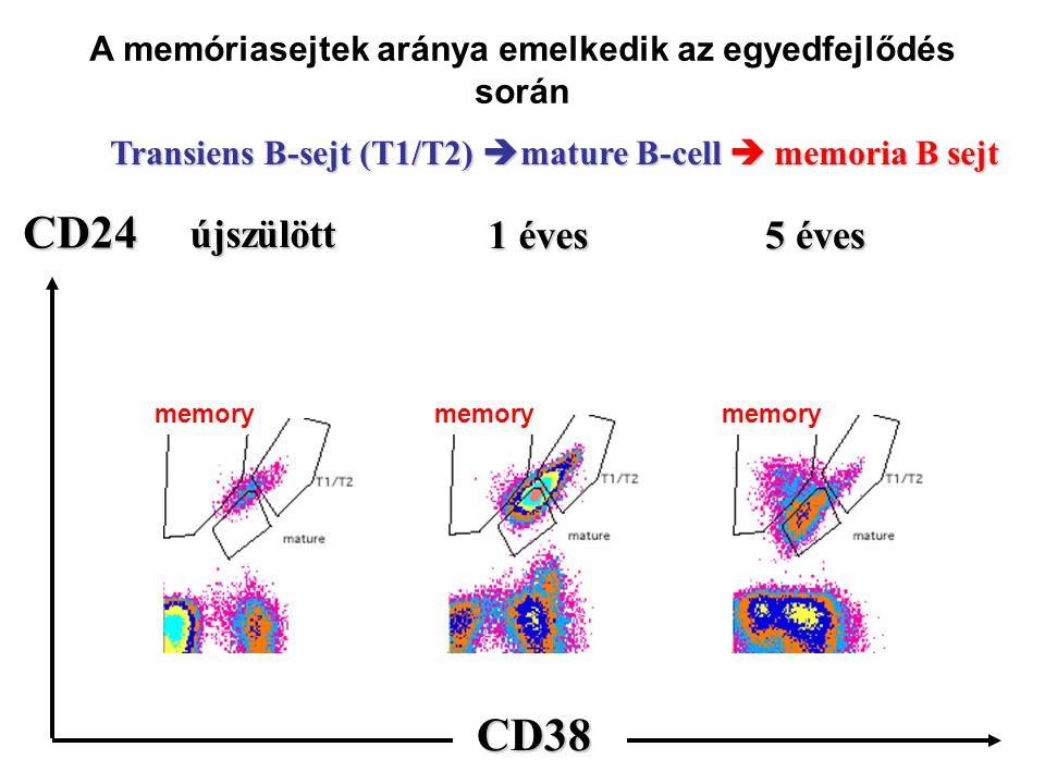 a a a CD24 CD38 újszülött 1 éves 5 éves Transiens B-sejt (T1/T2)  mature B-cell  memoria B sejt A memóriasejtek aránya emelkedik az egyedfejlődés során memory