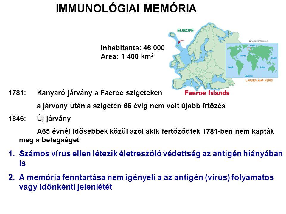 1781: Kanyaró járvány a Faeroe szigeteken a járvány után a szigeten 65 évig nem volt újabb frtőzés 1846: Új járvány A65 évnél idősebbek közül azol akik fertőződtek 1781-ben nem kapták meg a betegséget 1.Számos vírus ellen létezik életreszóló védettség az antigén hiányában is 2.A memória fenntartása nem igényeli a az antigén (vírus) folyamatos vagy időnkénti jelenlétét IMMUNOLÓGIAI MEMÓRIA Inhabitants: 46 000 Area: 1 400 km 2