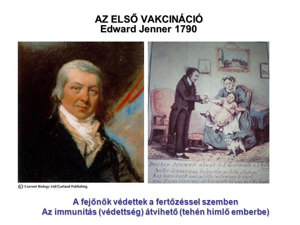 AZ ELSŐ VAKCINÁCIÓ Edward Jenner 1790 A fejőnők védettek a fertőzéssel szemben Az immunitás (védettség) átvihető (tehén himlő emberbe)