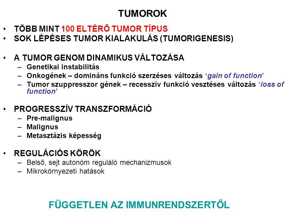 TUMOR ANTIGÉNEK –Oldott tumor antigének – gátolják a felismerést a sejtfelszínen –Antigén moduláció – ellenanyag függő internalizáció –Elfedés (masking) – pl.