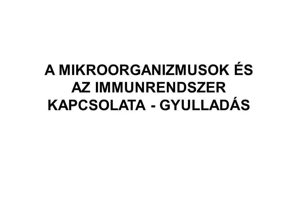 A MIKROORGANIZMUSOK ÉS AZ IMMUNRENDSZER KAPCSOLATA - GYULLADÁS