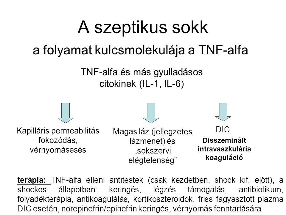 A szeptikus sokk a folyamat kulcsmolekulája a TNF-alfa TNF-alfa és más gyulladásos citokinek (IL-1, IL-6) Kapilláris permeabilitás fokozódás, vérnyomá