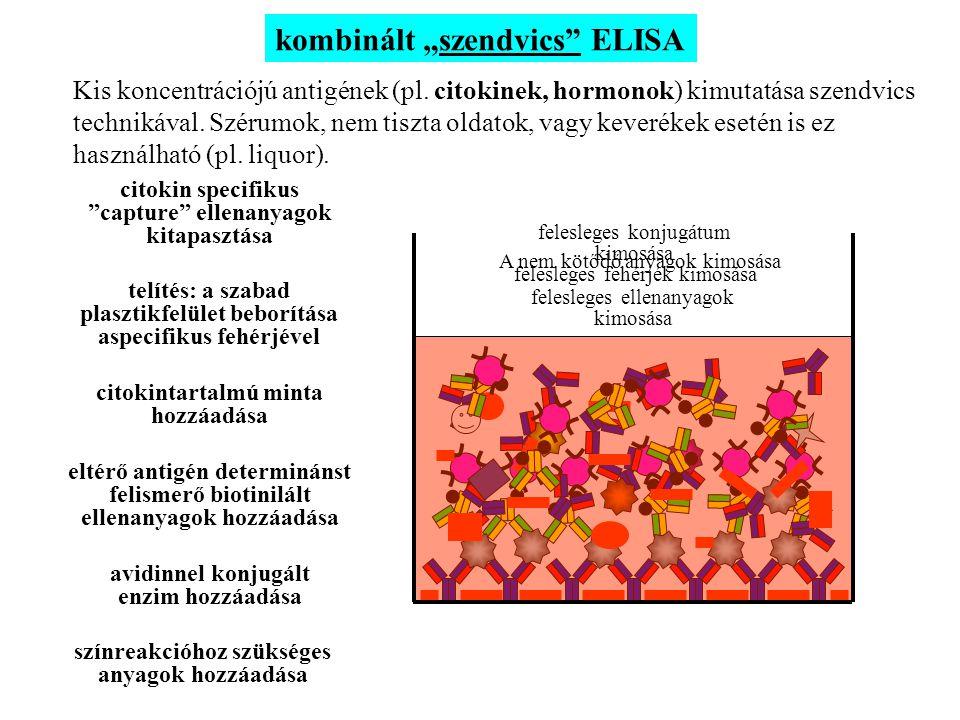 """kombinált """"szendvics"""" ELISA Kis koncentrációjú antigének (pl. citokinek, hormonok) kimutatása szendvics technikával. Szérumok, nem tiszta oldatok, vag"""
