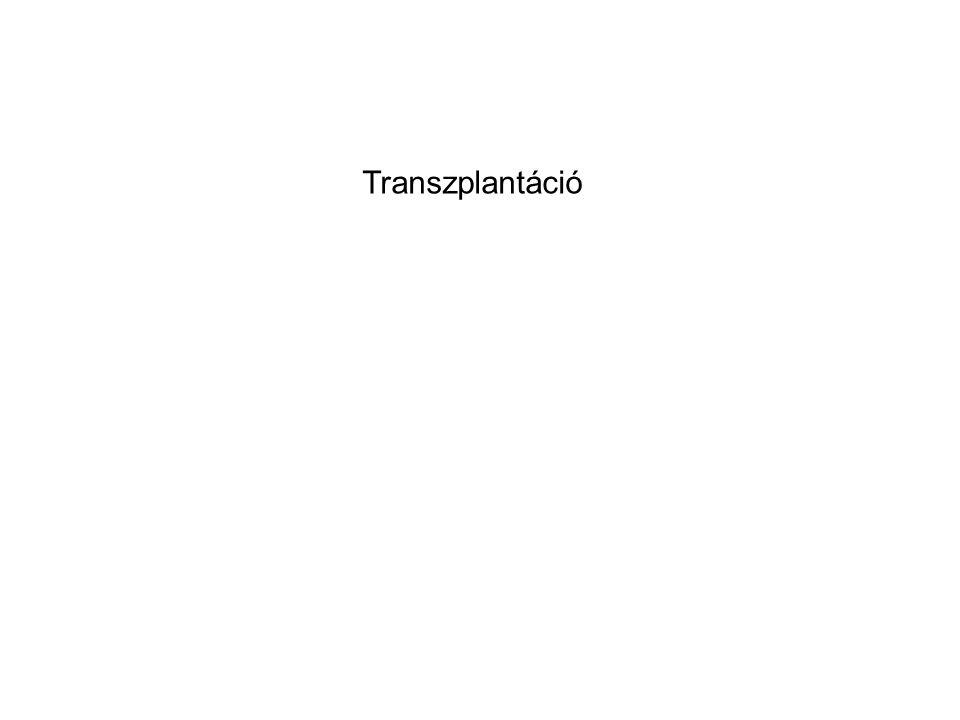 Transzplantáció