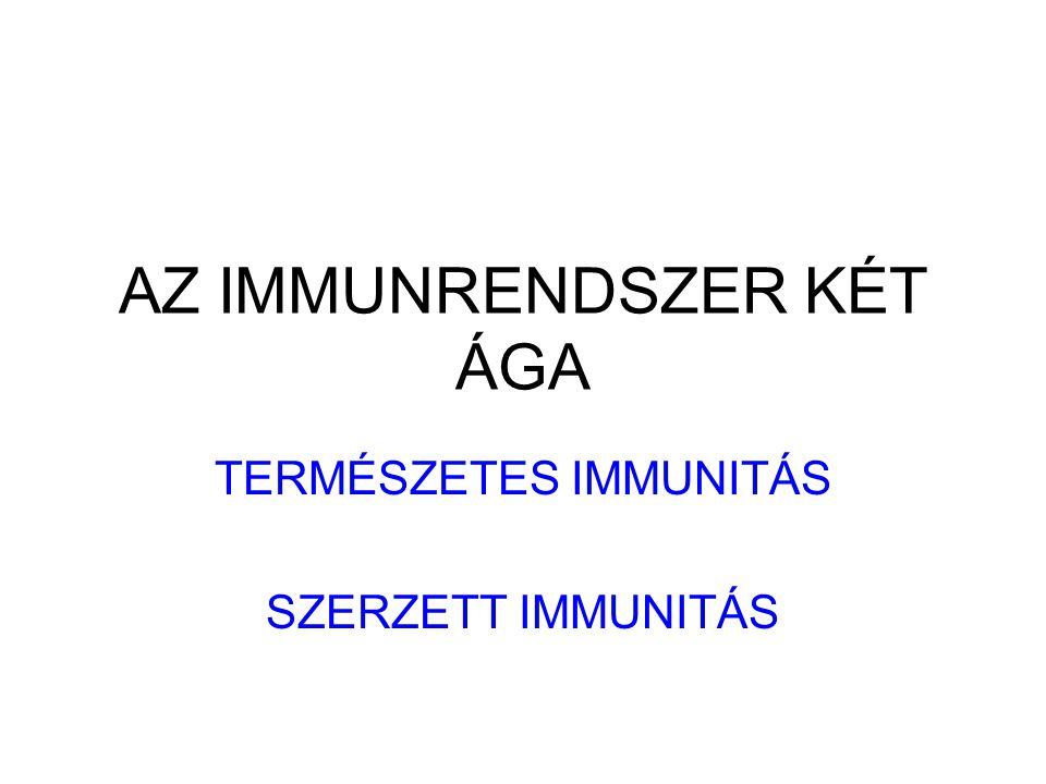 Máj C-reactív protein (pentamer) KOMPLEMENT Szérum Amyloid Protein (SAP) Mannóz/galaktóz kötés Kromatin, DNA, Influenza Fibrinogén Mannóz kötő lektin/protein MBL/MBP KOMPLEMENT IL- 6 AZ AKUT FÁZIS VÁLASZ Az IL-6 a májban akut fázis fehérjék termelését váltja ki