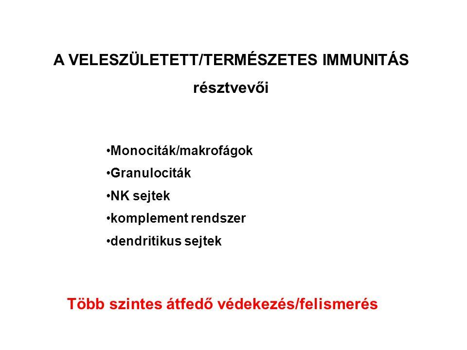 A VELESZÜLETETT/TERMÉSZETES IMMUNITÁS MECHANIZMUSAI